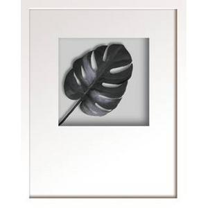 風景専門店あゆわら 《リーフアート》Hana concept frame Monstera deliciosa(モンステラ デリシオサ) タイプ2 【サイズ W380xH480xD30mm】