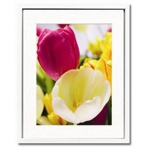 風景専門店あゆわら 《アートフォトフレーム》Tulipes(チューリップ)