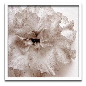 風景専門店あゆわら 《フォトフレーム》jk driggs Blossom[One](ブロッサム1)