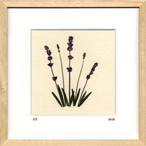 風景専門店あゆわら 《ハーブ アートフレーム》Lavender(ラベンダー) タイプ2 【サイズ 270x270x20mm】
