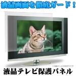 液晶テレビ保護パネル 42インチ用 アンチグレア ITG-42AG 【簡単設置】