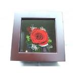 プリザーブドフラワーの壁掛け 赤バラ