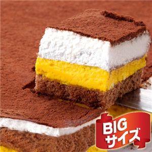 【お歳暮用 のし付き(名入れ不可)】特大!!南瓜ティラミスケーキ