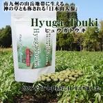 ヒュウガトウキ(HyugaTouki) (240mg×180粒 約1か月分)×2袋セット送料無料!