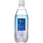 サッポロ おいしい炭酸水[純水使用]  500mlPET 144本セット (6ケース)