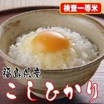【味と価格に自信アリ!】厳選一等米!平成21年産 福島県産こしひかり玄米20Kg(5kg×4)