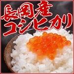 新潟県長岡産コシヒカリ20kg(10kg×2袋)