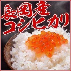 新潟県長岡産コシヒカリ30kg(10kg×3袋)