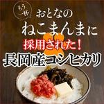 平成21年産 中村さんちの新潟県長岡産コシヒカリ白米 30kg(10kg×3袋)