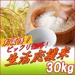 平成21年産 中村さんちの新潟県長岡産コシヒカリ玄米 30kg(10kg×2袋+5kg×2袋)