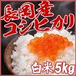 【お試しに!】平成25年産 中村農園の新潟県長岡産コシヒカリ白米5kg