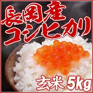 【お試しに!】平成27年産新米! (株)中村農園の新潟県長岡産コシヒカリ玄米5kg