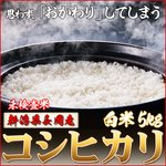 お試しに!平成25年産 新潟県長岡産コシヒカリ(未検査米)白米5kg