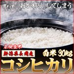 平成25年産 新潟県長岡産コシヒカリ(未検査米)白米30kg (5kg×6袋)