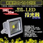LED投光器 30W/300W相当/防水/広角150° AC100V/5Mコード