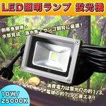 LED照明ランプ 投光器 10W/25000K 水草・熱帯魚・海水魚飼育 水槽用