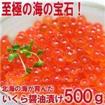 【お歳暮用 のし付き(名入れ不可)】お徳用!ぷっちぷちのいくらの醤油漬500g
