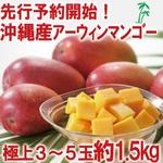【完全予約販売 早期予約限定価格 訳あり】★沖縄産 糖度13度以上★美味しい訳ありマンゴー1.5キロ(3玉〜5玉)