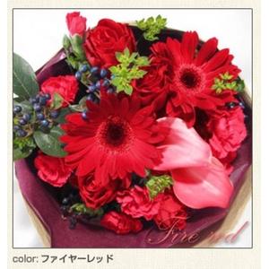 幸せいっぱいの贈り物 フェアリーブーケ ファイヤーレッド とっておきのプレゼント♪心を込めた花束を・・・♪