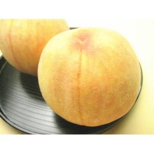 フルーツ王国福島からお届けする【幻の桃】! 黄金桃 2k