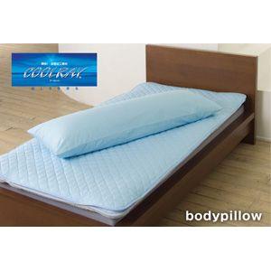 クールレイ(R) 抱き枕[カバー付き] ブルー