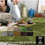EXマイクロファイバー洗えるラグマット 200×200cm セイジグリーン