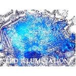 ★正規品★LEDイルミネーション100球 ブルー 50本連結可能