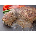 【2012年1月5日より順次発送】銀座4丁目スエヒロ調理簡単煮込み風ハンバーグ(ミニサイズ80g) 詰め合わせ9個セット