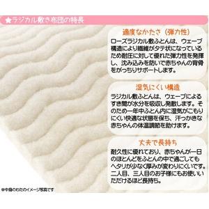 京都西川 国産 カバーリング式ベビー組布団 7点セット (ラジカル敷布団&羽毛掛布団 セット)