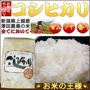 平成24年産 澤田農場の新潟県上越産コシヒカリ白米 20kg(5kg×4袋)