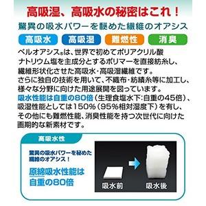 防ダニ抗菌防臭綿入!TEIJINテイジン ベルオアシス使用!すのこ型除湿マット【エアジョブR】(シングル)