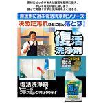 復活洗浄剤ビニール・プラスチック用300ml