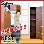 マルチカラーボックス5D【NEST.】5ドアタイプ ダークブラウン