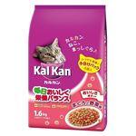 (まとめ)KDN22カルカンドライまぐろと野菜1.6k 【猫用・フード】【ペット用品】【×6セット】