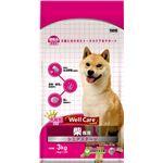 (まとめ)ウェルケア 柴専用 シニアステージ 3kg【×4セット】【ペット用品・犬用フード】