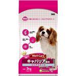 (まとめ)ウェルケア キャバリア専用 シニアステージ 3kg【×4セット】【ペット用品・犬用フード】