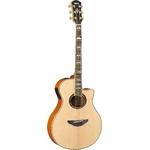 YAMAHA(ヤマハ) エレクトリックアコースティックギター APX1000 NT