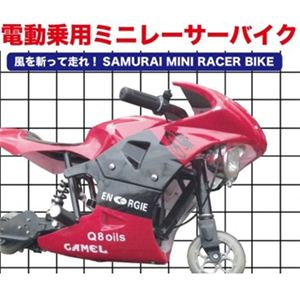 電動乗用ミニレーサーバイク ポケバイ