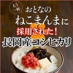平成21年産 中村さんちの新潟県長岡産コシヒカリ白米 30kg(10kg×2袋+5kg×2袋)