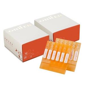【2012年1月10日より順次発送】【ORifER】オリファ発酵美養液 2箱セット(30本×2)