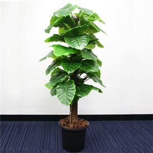 人工観葉植物 クワズイモ 145cm