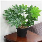人工観葉植物 ミニヤツデ 45cm