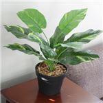 人工観葉植物 ミニポトス 白斑 45cm