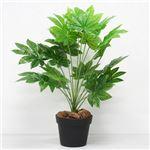 人工観葉植物 ミニヤツデ 60cm