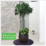 人工観葉植物 カポック ヤドリフカノキ 120cm