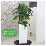 人工観葉植物 ヤツデ 130cm