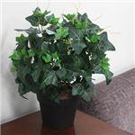 人工観葉植物 アイビー ツル 50cm