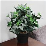 人工観葉植物 アイビー ツル 光沢 50cm