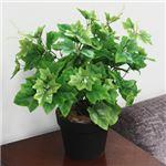 人工観葉植物 グレープリーブス 紅白斑 ツル 50cm