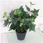 人工観葉植物 アイビー 45cm